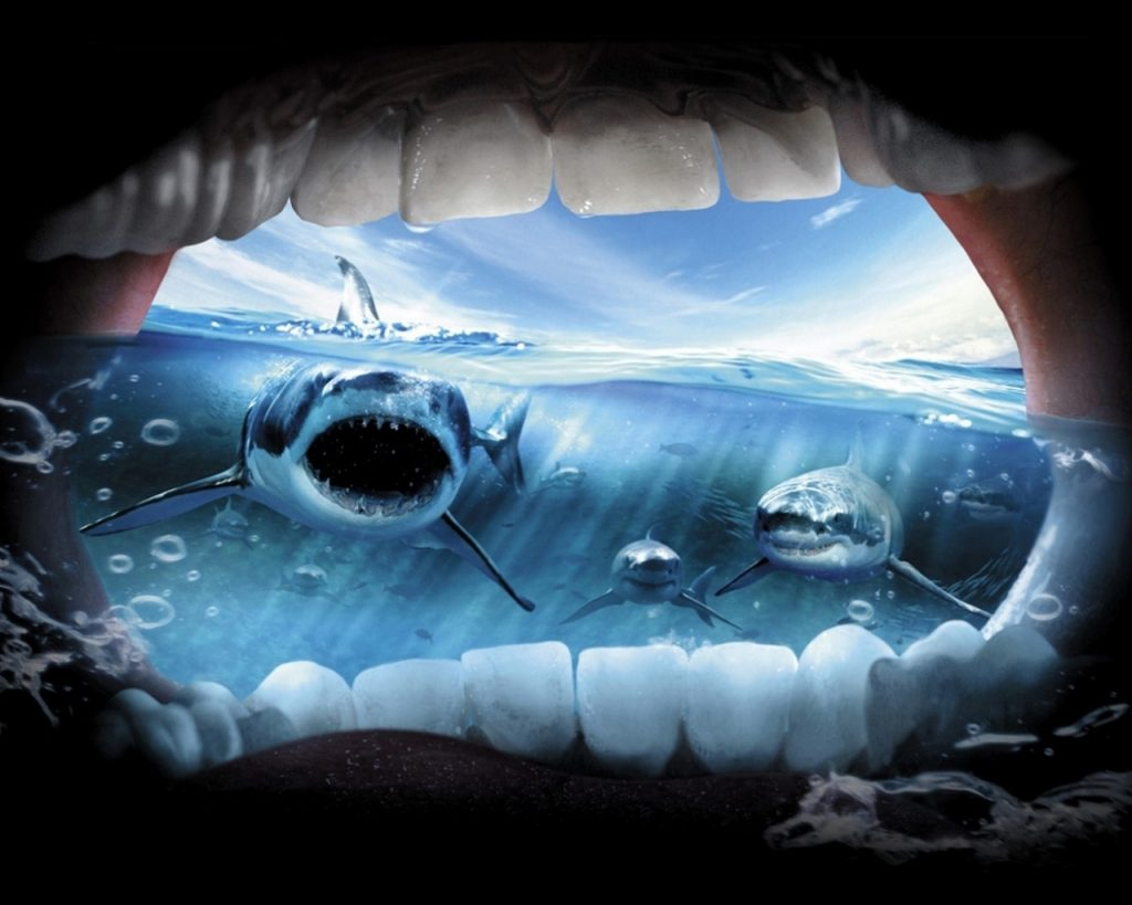 bxXKE-PIC-MCH042809-1024x819 Jaws 2 Wallpaper 20+
