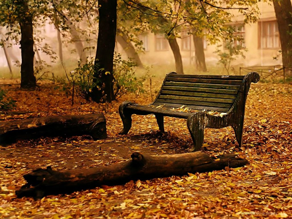 fall-wallpaper-PIC-MCH062991-1024x768 Hd Autumn Wallpapers Free 45+