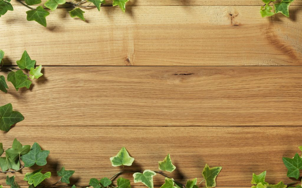 free-ivy-on-wood-wallpapers-HD-windows-apple-tablet-artworks-k-samsung-wallpapers-free-download-PIC-MCH065457-1024x640 Wood Wallpaper 4k 18+