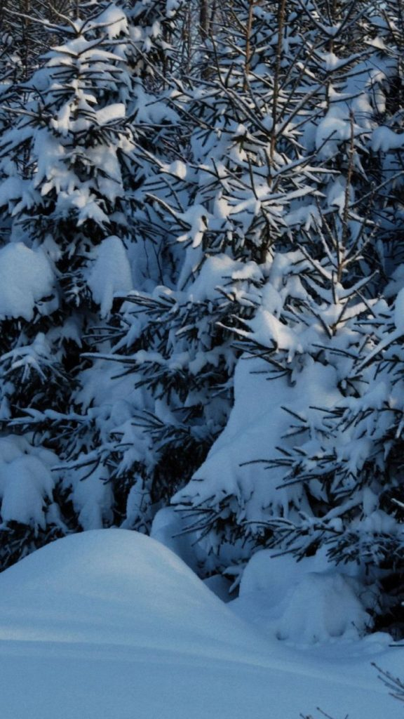 iphone-wallpapers-hd-ngyg-x-PIC-MCH076635-576x1024 Winter Wallpapers For Iphone 52+