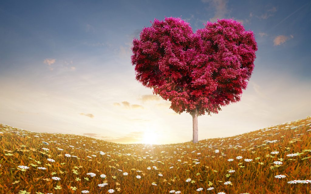 love-wallpapers-for-android-For-Desktop-Wallpaper-PIC-MCH083497-1024x640 Free Love Wallpapers For Android 14+