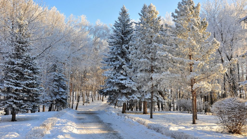 russian-winter-hd-wallpapers-PIC-MCH099640-1024x576 Winter Wallpapers Hd 42+
