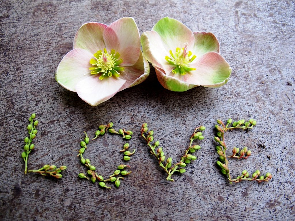 sm-LoveIsLove-PIC-MCH0102409-1024x768 Love Point Wallpapers Flower Heart 23+