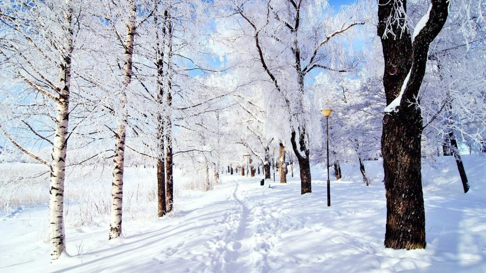 snow-forest-laptop-backgrounds-K-wallpaper-middle-size-PIC-MCH0102626 Wallpaper Snowfall 40+