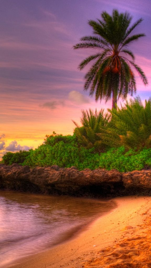 summer-PIC-MCH0104750-576x1024 Paradise Wallpapers For Iphone 6 34+