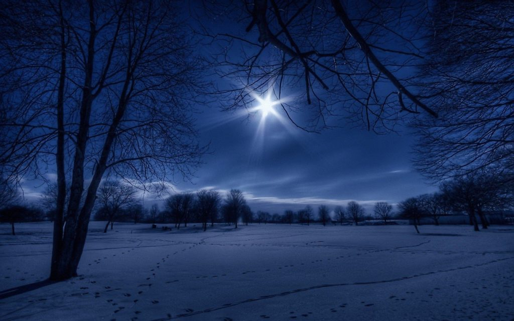 winter-nature-white-moonlight-wallpaper-night-footprint-snow-wallpapers-landscapes-trees-PIC-MCH0116907-1024x640 Wallpaper Snow Night 41+