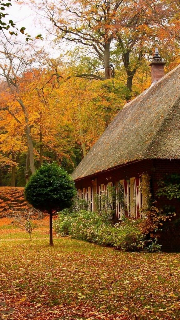ws-Country-House-in-Autumn-x-PIC-MCH0118858-577x1024 Country Wallpapers For Iphone 5 30+