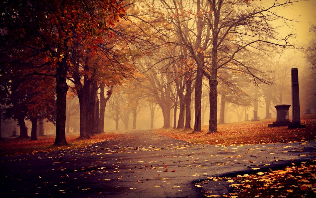 ws-Park-in-Autumn-x-PIC-MCH0119422-1024x640 Hd Fall Wallpapers For Mac 35+