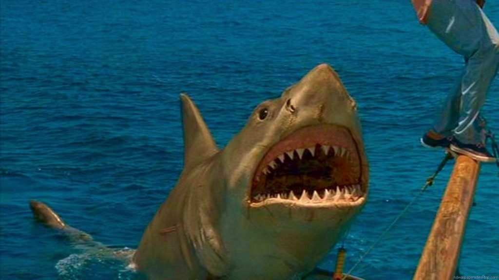 yvjITW-PIC-MCH0120988-1024x576 Jaws Wallpaper Android 25+
