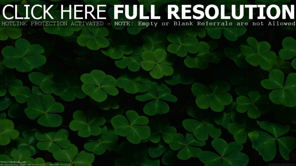 Green-Leaves-Nature-Images-Wallpaper-HD-Desktop-Mobile-PIC-MCH069919-1024x576 Hd Green Wallpaper For Desktop 23+