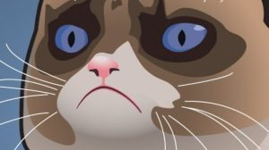 Grumpy Cat Iphone Wallpapers 22+