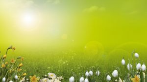 Spring Desktops Wallpapers Free 58+