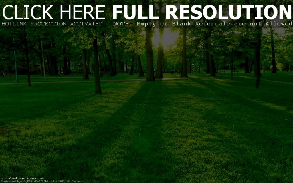 Wallpapers-For-Pc-PIC-MCH0115124-1024x640 Hd Green Wallpapers For Pc 32+