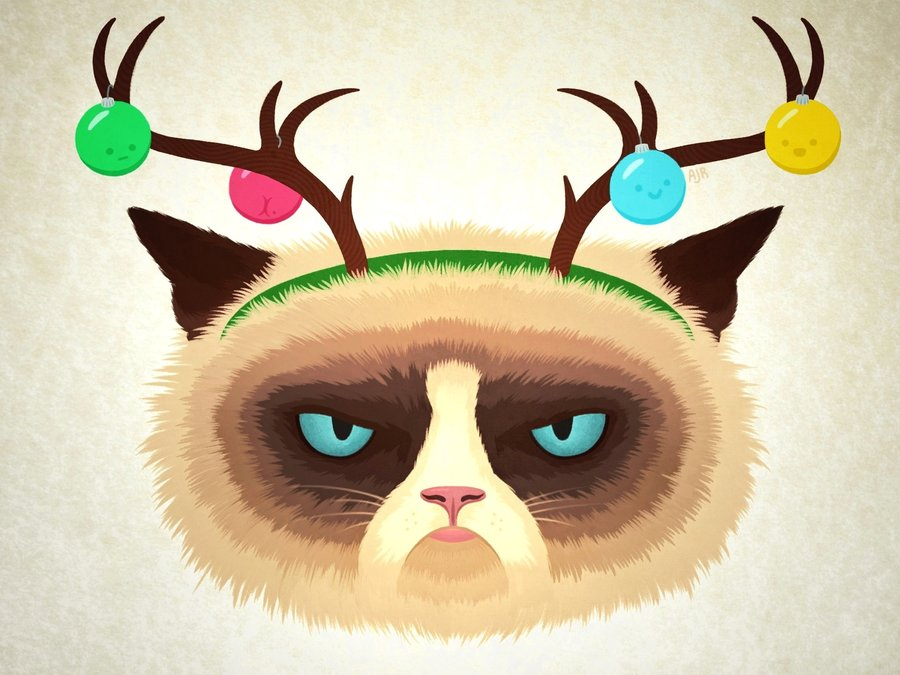 bb-PIC-MCH023977 Grumpy Cat Christmas Wallpapers 21+