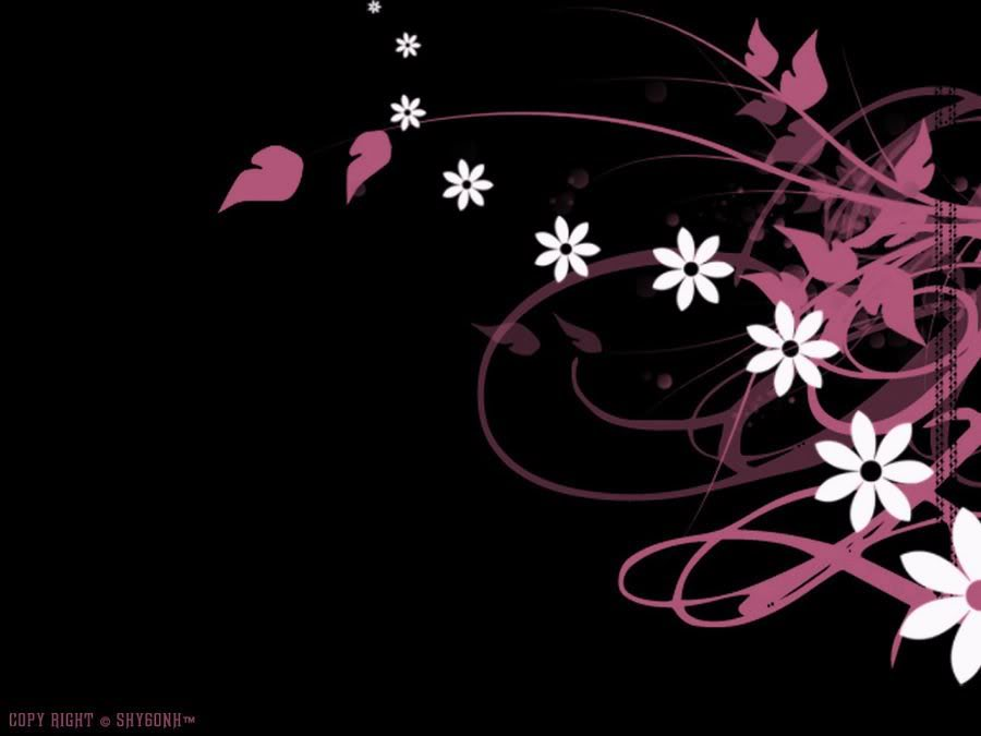 black-white-and-pink-backgrounds-cool-hd-wallpaper-PIC-MCH047684 Wallpapers Pink And Black 39+