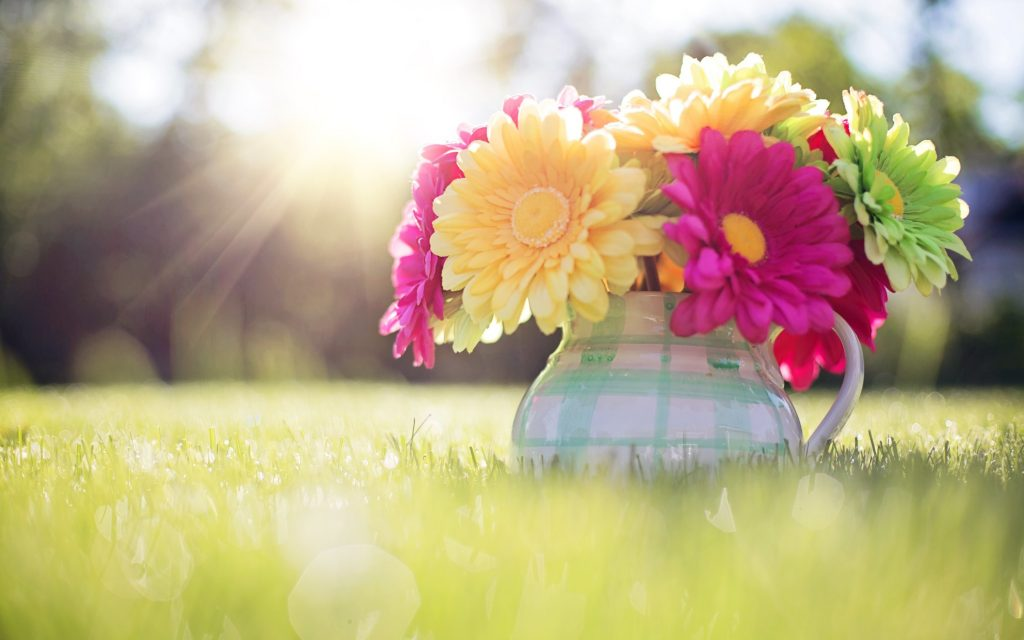 gorgerous-spring-background-pictures-for-desktop-x-PIC-MCH02256-1024x640 Spring Desktops Wallpapers Free 58+
