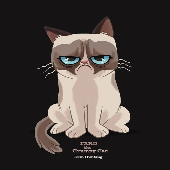 Grumpy Cat Iphone Wallpapers 22 Page 3 Of 3 Dzbc Org
