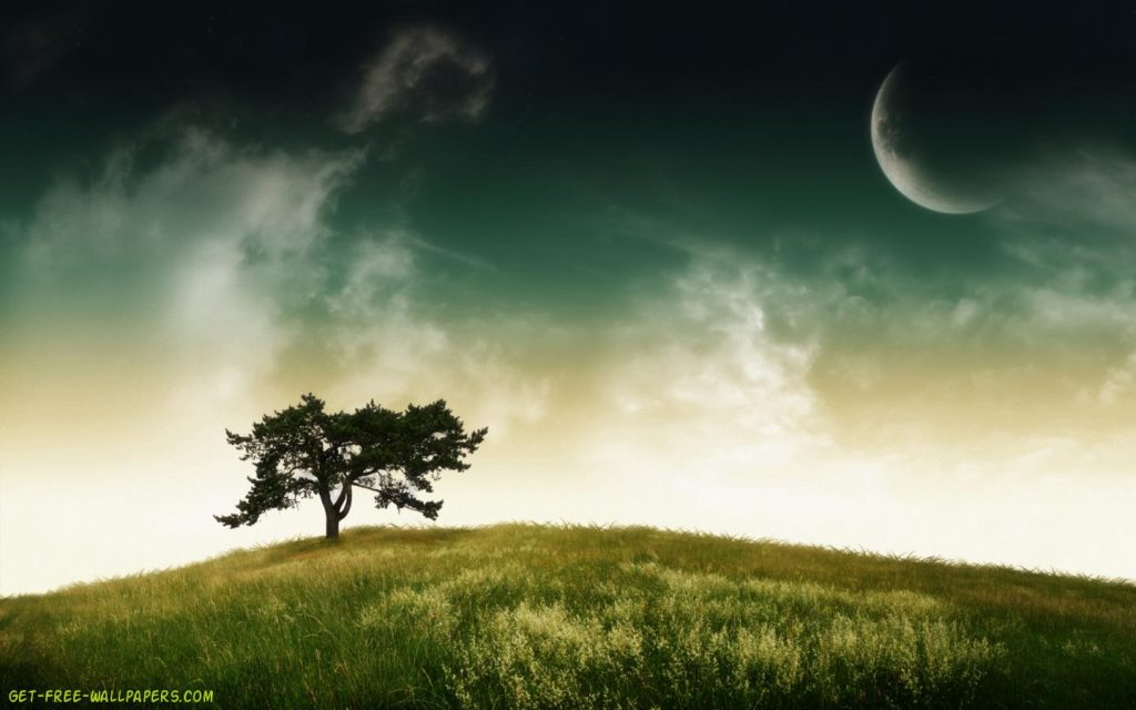 lonely-tree-wallpaper-PIC-MCH082898-1024x640 Lonely Wallpapers For Android 37+