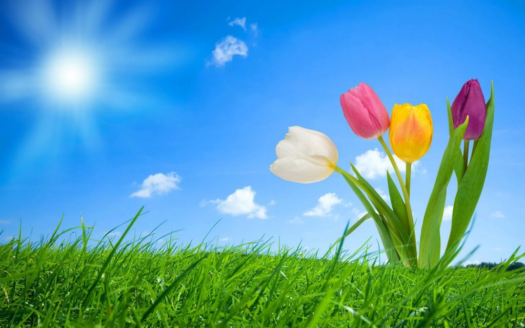 spring-desktop-clipart-free-PIC-MCH0103500-1024x640 Spring Desktops Wallpapers Free 58+