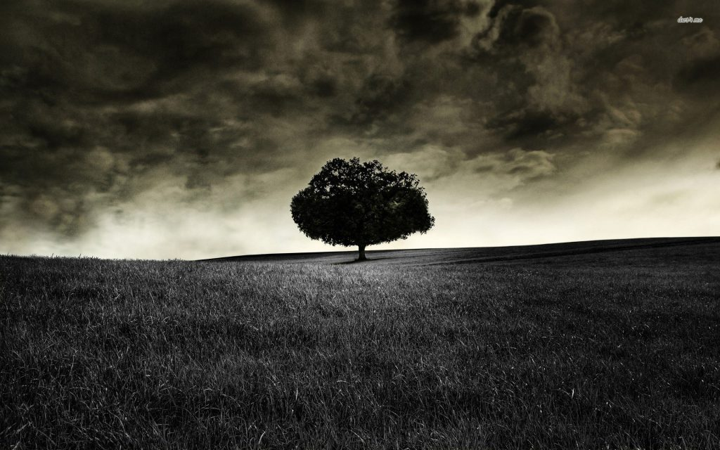 tree-field-sky-cloud-PIC-MCH0108107-1024x640 Lonely Wallpapers For Android 37+