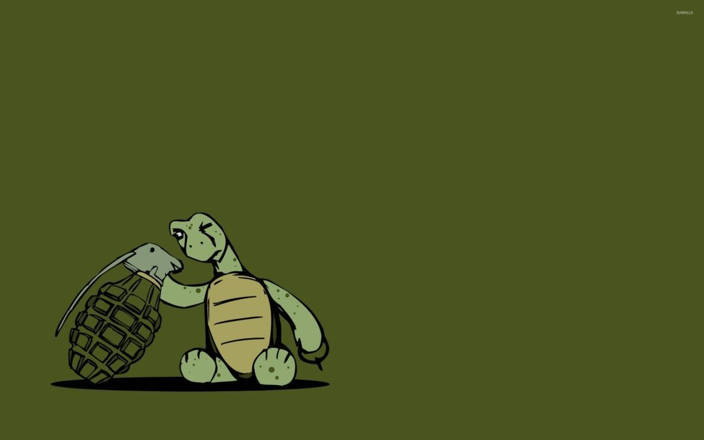 turtle-inspecting-a-grenade-x-PIC-MCH0108504-1024x640 Funny Turtle Wallpapers 27+