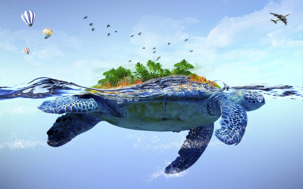 turtle-wallpaper-PIC-MCH017767-1024x640 Awesome Turtle Wallpapers 32+