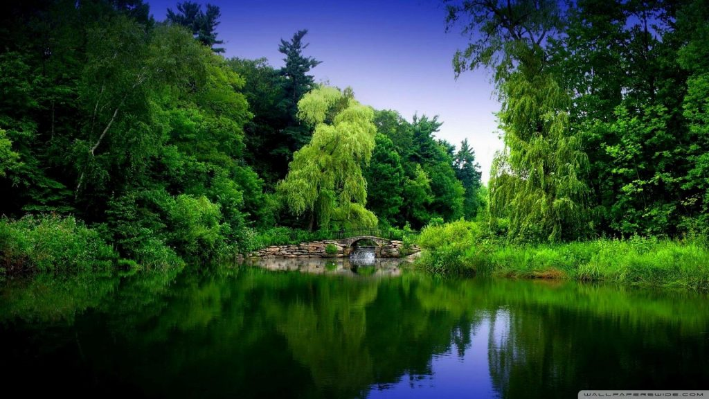 wallpaper-nature-HD-PIC-MCH0112271-1024x576 Super Hd Wallpapers Nature 34+