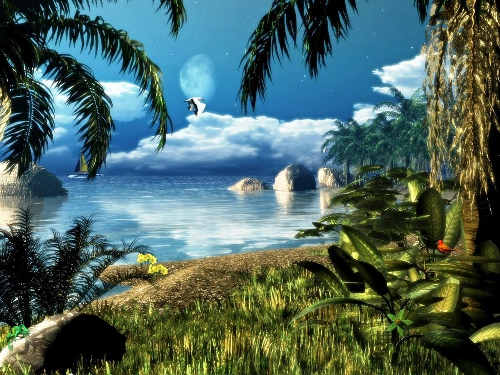 wallpaperyou-PIC-MCH0114570-1024x768 Animation Wallpaper For Pc 44+