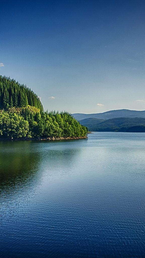 ws-Beautiful-River-Forest-Romania-x-PIC-MCH0118691-577x1024 Romania Wallpaper Iphone 19+