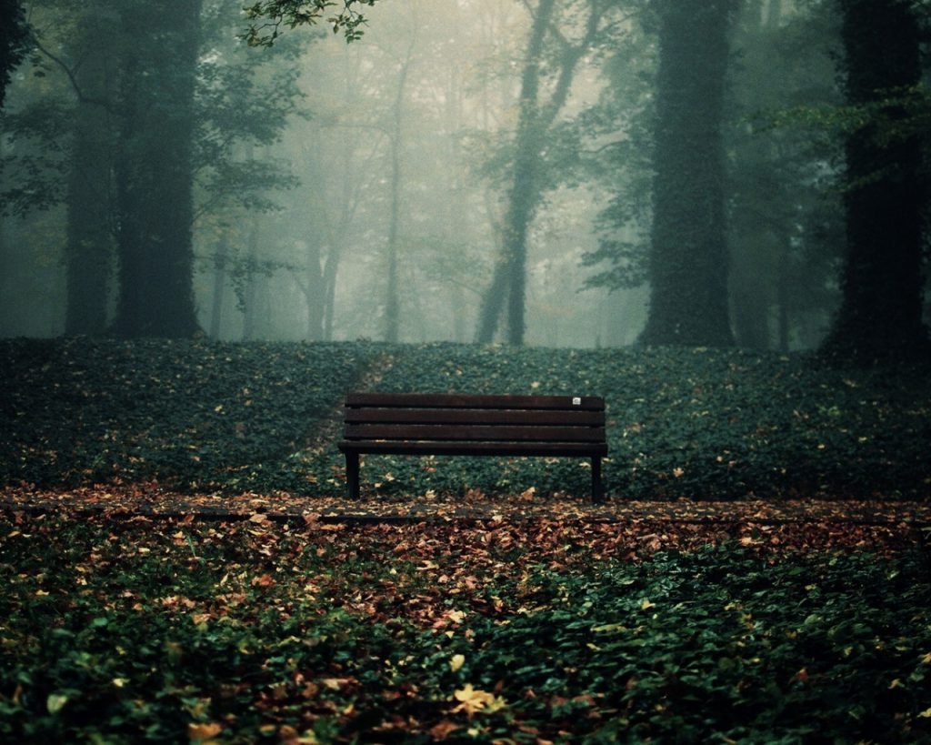 ws-Lonely-Bench-in-Autumn-Park-x-PIC-MCH0119215-1024x819 Lonely Wallpapers For Pc 33+