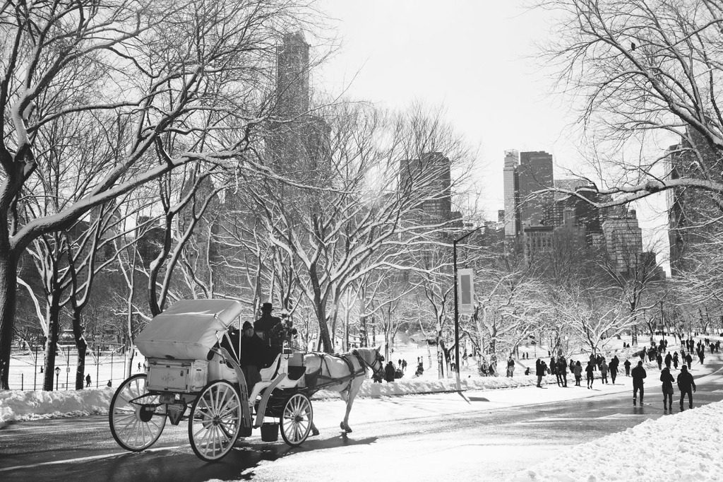 ContentImage-Dustin-Cantrell-Central-Park-BW-PIC-MCH053799-1024x682 Central Park Snow Wallpaper 30+