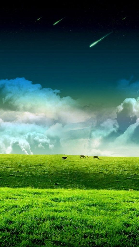 Green-Cow-Pasture-PIC-MCH069869-577x1024 Cow Wallpaper For Iphone 40+