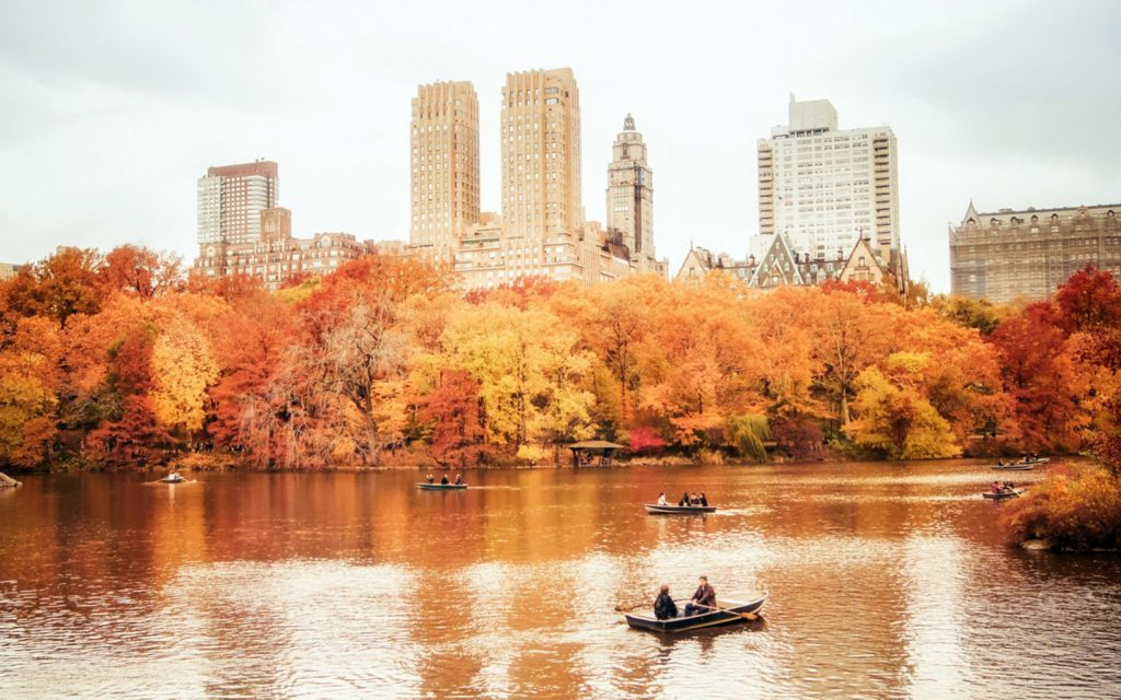 New-York-Central-Park-Fall-wallpaper-PIC-MCH089790-1024x640 Central Park Wallpaper Ipad 36+