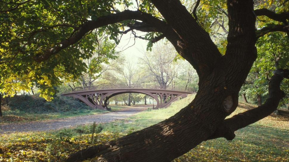 bridge-in-nyc-central-park-P-wallpaper-middle-size-PIC-MCH049595 Central Park Wallpaper 1080p 31+