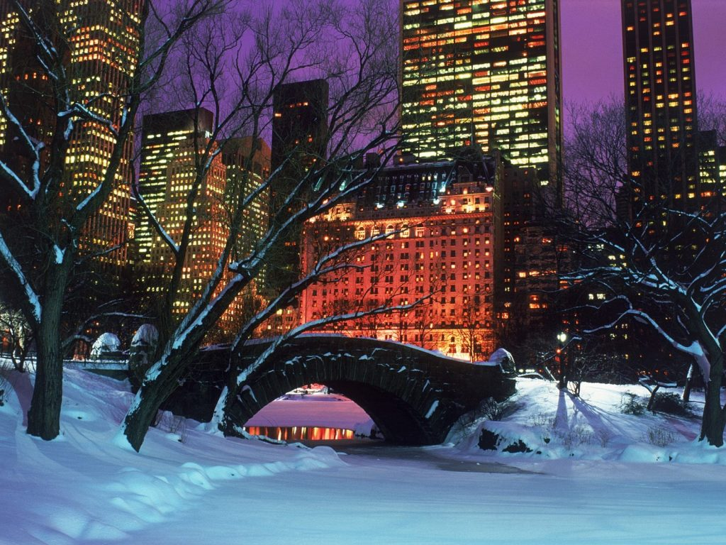 downloadfiles-wallpapers-central-park-in-winter-wallpaper-winter-nature-PIC-MCH060354-1024x768 Central Park Snow Wallpaper 30+