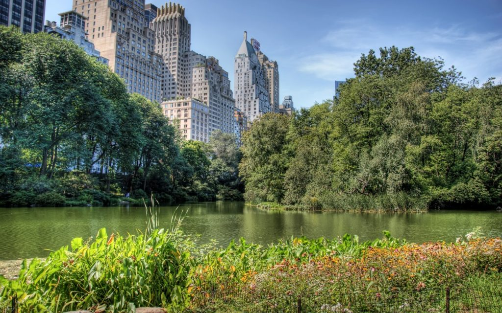 free-central-park-wallpaper-PIC-MCH065029-1024x640 Central Park Wallpaper 1080p 31+