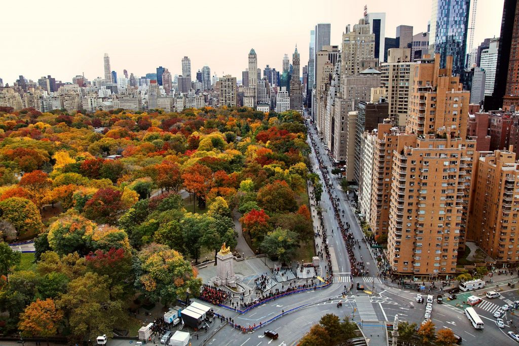 houses-central-park-manhattan-new-york-osen-picture-PIC-MCH073888-1024x683 Nyc Wallpaper Hd 1080p 36+