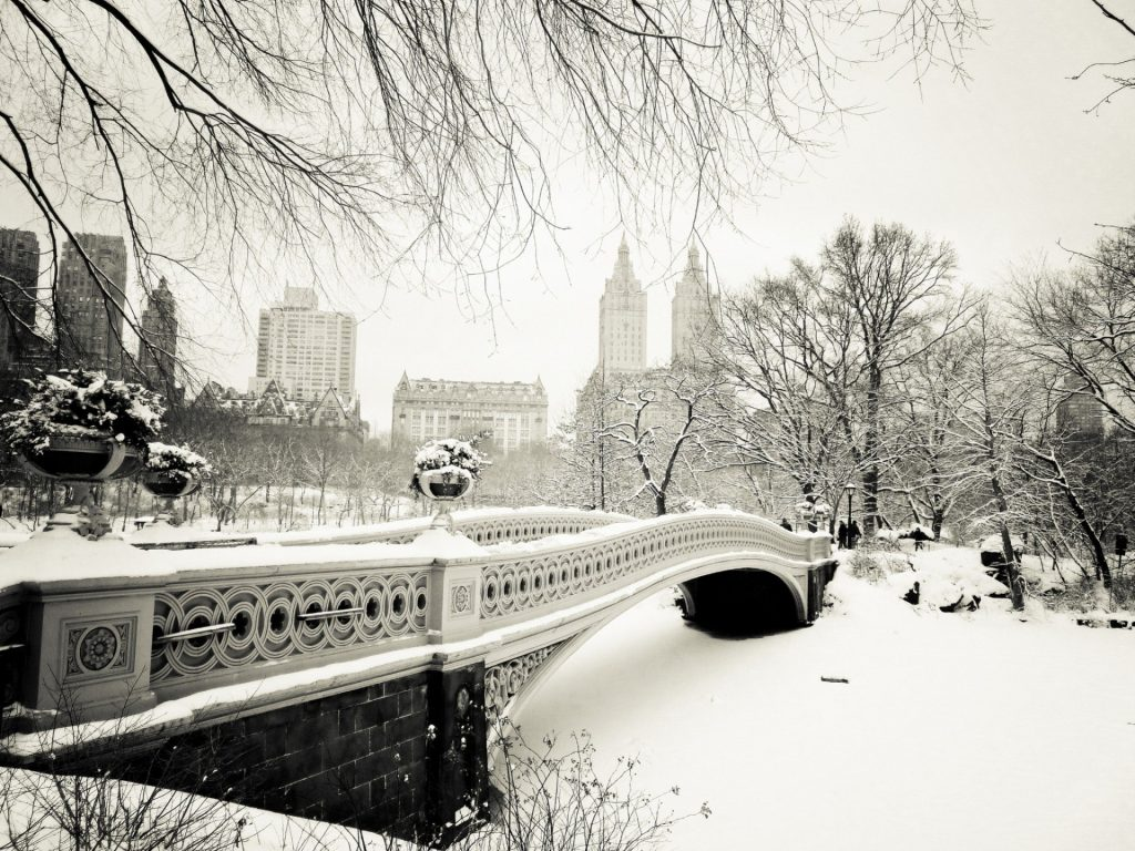 nature-new-york-winter-tree-town-snow-united-states-central-park-PIC-MCH089070-1024x768 Central Park Snow Wallpaper 30+