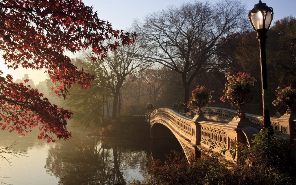 new-york-city-central-park-K-wallpaper-PIC-MCH089805-1024x640 Central Park Wallpaper 1080p 31+