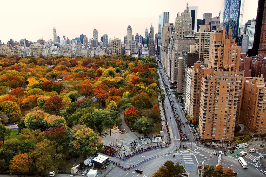 pretty-nature-wide-wallpaper-PIC-MCH096152-1024x683 Central Park Wallpaper Desktop 30+