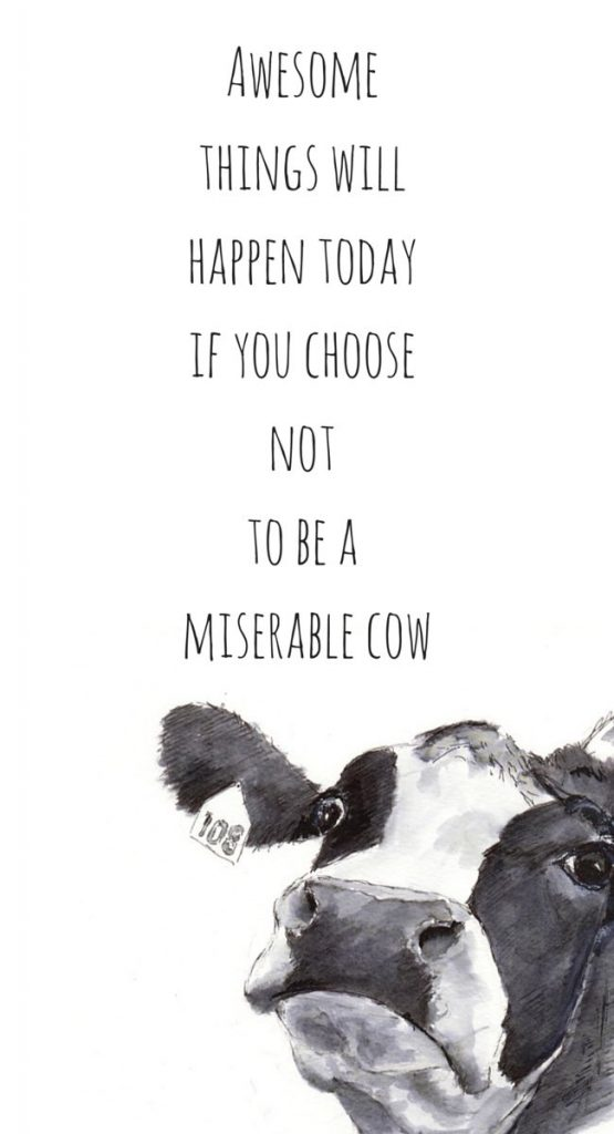 whohatesbambi-motivational-free-iphone-screensaverswallpapers-www-whohatesbambi-PIC-MCH0116405-555x1024 Cow Wallpaper For Iphone 40+