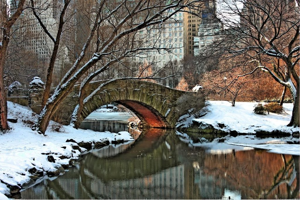 winter-winter-central-park-snow-bridge-pond-trees-free-wallpapers-PIC-MCH0116994-1024x682 Central Park Snow Wallpaper 30+
