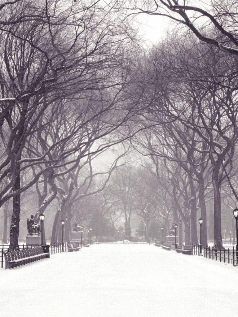 ws-Central-Park-New-York-Four-x-PIC-MCH0118804-768x1024 Central Park Snow Wallpaper 30+
