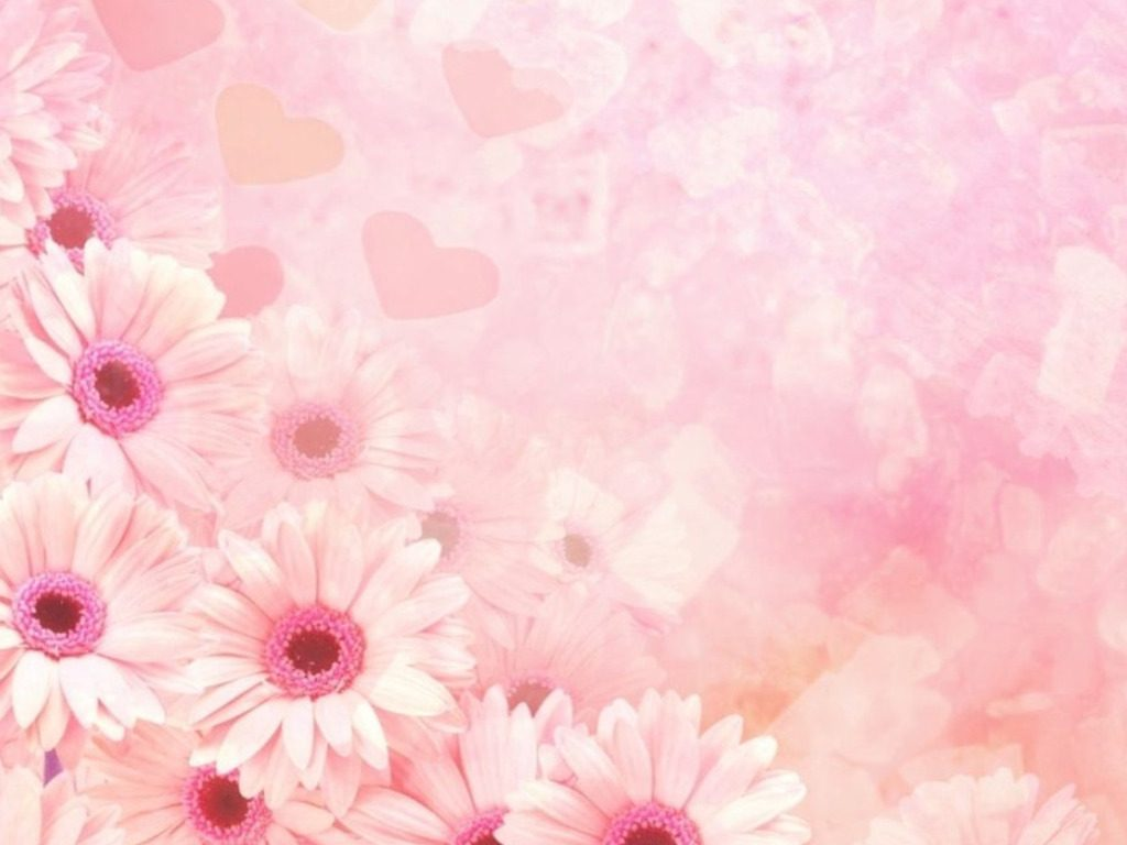 ETAU-PIC-MCH062409-1024x768 Baby Pink Wallpaper Hd 41+