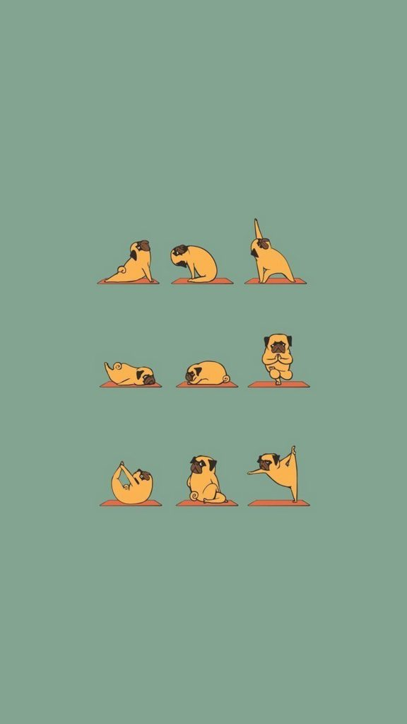 Funny-Pug-Doing-Yoga-iphone-wallpaper-ilikewallpaper-com-PIC-MCH066917-576x1024 Funniest Wallpapers For Iphone 46+