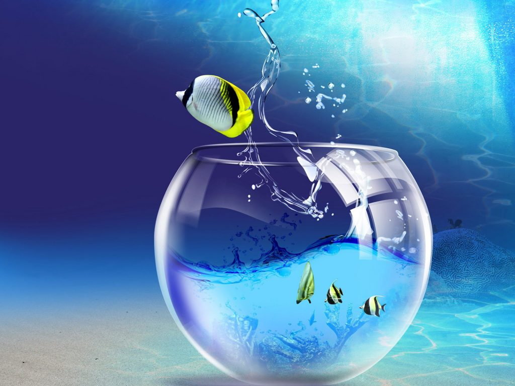 d-clipart-free-download-for-windows-PIC-MCH019667-1024x768 Windows Wallpaper Location Windows 7 13+
