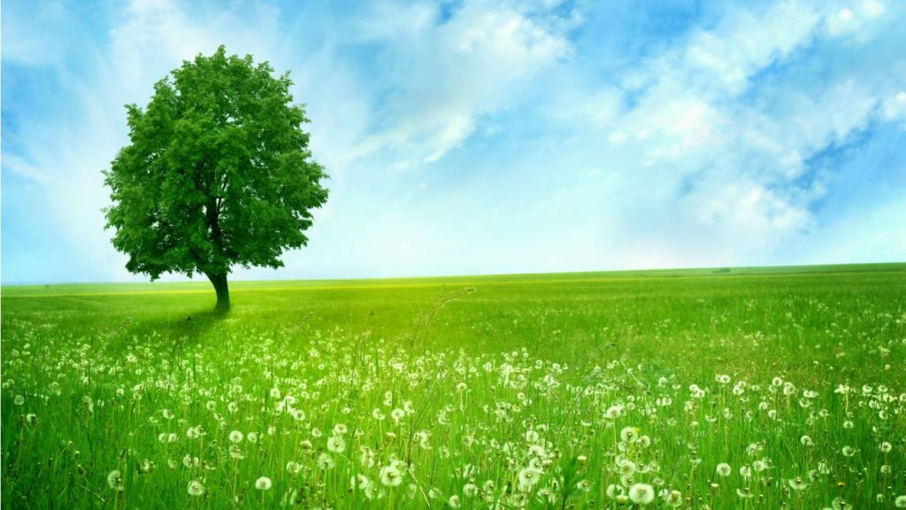 download-nature-wallpaper-PIC-MCH017642-1024x576 Cool Nature Wallpapers For Pc 35+