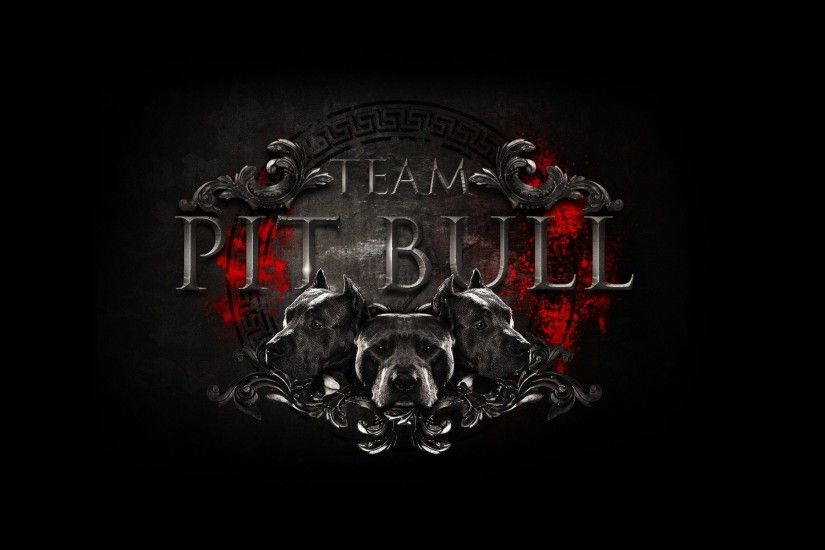full-size-pit-bull-wallpaper-x-for-iphone-s-PIC-MCH029072 Bull Wallpaper Iphone 39+