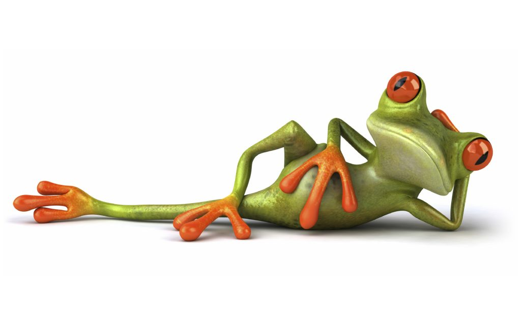 funny-frog-widescreen-high-definition-wallpaper-for-desktop-background-download-images-free-cool-de-PIC-MCH066830-1024x640 Funniest Wallpapers Free 51+