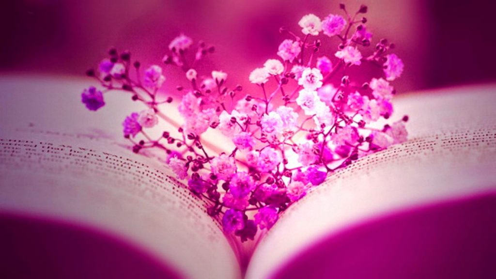 pink-flowers-cover-photos-for-facebook-desktop-background-PIC-MCH095215-1024x576 Most Beautiful Love Wallpapers For Facebook 29+